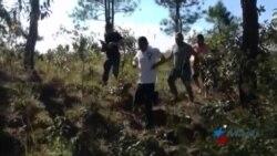 Aumenta número de cubanos que llegan a Estados Unidos por Honduras