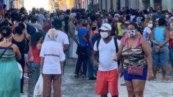 Campesinos cubanos alertan que el Estado deja perder cosechas en un momento crítico
