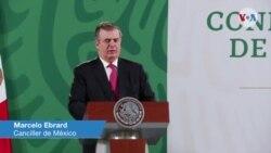 Declaraciones del canciller mexicano Marcelo Ebrard