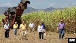 Coalición Agrícola de EEUU visita un central azucarero. EFE
