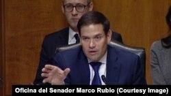 El senador republicano de origen cubano, Marco Rubio (Imagen es cortesía de la Oficina del Senador Rubio).