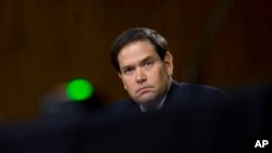 Marco Rubio, senador republicano de origen cubano.