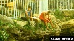 Reporta Cuba pesca en aguas contaminadas. Foto: Bárbara Fernández.