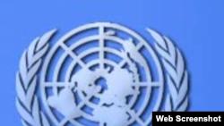 Cuba no cumple con sus obligaciones ante la ONU