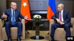 El presidente de Turquía visita Sochi
