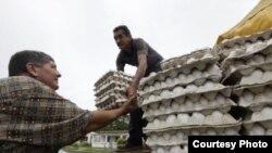 Los cartones de huevos de 30 unidades se vendían en el mercado negro por entre 35 y 40 pesos cubanos.