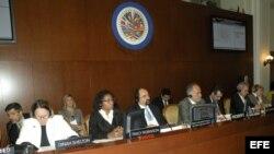 Comisión Interamericana de Derechos Humanos pide protección para activistas cubanos