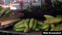 Testimonios sobre la situación alimentaria en Cuba