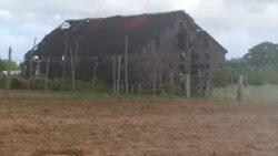 Así quedó una casa de tabaco afectada por la tormenta Laura en agosto
