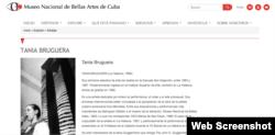 La ficha de Tania Bruguera en el Museo Nacional de Bellas Artes.