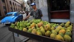 Campesinos se quejan de exclusión de mercado mayorista