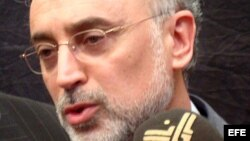 Fotografía de archivo del ministro de Asuntos Exteriores iraní, Alí Akbar Salehi. EFE/KHIDER ABBAS