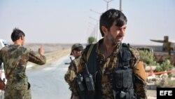 Miembros de las Fuerzas Democráticas Sirias (SDF).