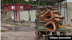 Reporta Cuba. Un coche lleva coronas de flores del cementerio a la funeraria para venderlas a 20 pesos. Foto: Beatriz Borroto.