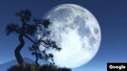 Múltiples sondas chinas han observado la superficie lunar con miras a una misión tripulada a la Luna.