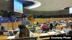 Disidentes cubanos en la Eurocámara