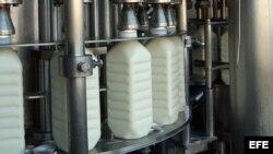 Planta de embotellado de la fábrica de productos lácteos.