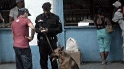 Contacto Cuba   Actos represivos en Cuba