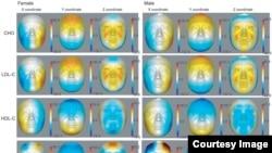 Los rasgos faciales reflejan la edad a medida que se envejece, según el estudio de la Universidad Fudan en Shanghái.