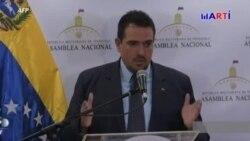 Vicepresidente de la Asamblea Nacional pide elecciones