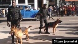 Red Cubana de Comunicadores / foto-reportaje de Juliet Michelena 1
