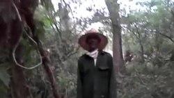 Campesino pide libertad para trabajar la tierra en Cuba