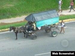 Los caballos deben tirar coches muy pesados