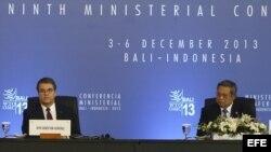 El presidente indonesio Susilo Bambang Yudhoyono (d) y el director general de la Organización Mundial del Comercio (OMC), el brasileño Roberto Azevedo, asisten a la reunión ministerial de la OMC en Bali (Indonesia).