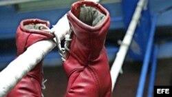 Guantes de boxeo.