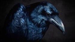 Cría cuervos y verás