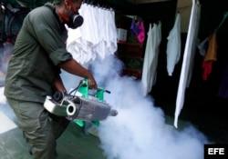 La campaña para luchar contra el mosquito trasmisor del zika no ha sido suficiente.