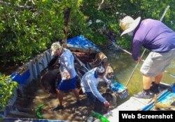 Especialistas retiraron 31 embarcaciones hundidas o encalladas entre los manglares y cenegales de las Marquesas. (Foto: Celia Hitchins/Monroe County Marine Resources Office)