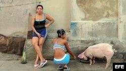 La violencia de género continua siendo un serio problema en la sociedad cubana.