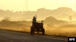 Un campesino conduce un carretón por la autopista nacional, en la occidental provincia de Pinar del Río