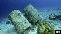 LON01. LONDRES, 20/06/2011.- Imagen facilitada por Marine Photobank, que acompaña un informe realizado sobre el estado de los océanos del mundo, avisando del riesgo de entrar en una fase de extinción de especies marinas sin precedentes en la historia de l