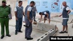 Reporta Cuba. Reos trabajan bajo supervisión.
