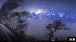 Stephen Hawking y la noche cubana