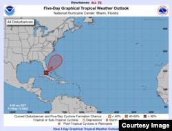 Pronóstico del desarrollo de la tormenta. (NHC)