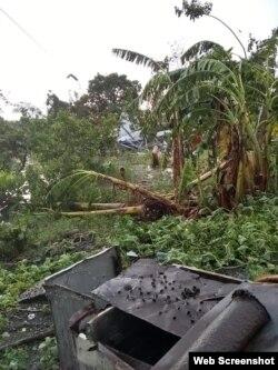 Los fuertes vientos ocasionaron daños a los platanales y otros cultivos agricolas. Foto Eirk Eduardo Facebook