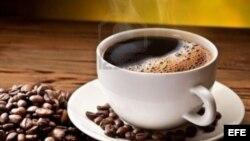 El grano de café contiene más de mil moléculas de antioxidantes y polifenoles.