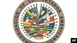 Denuncian en sesión de la OEA violación de DDHH en Cuba