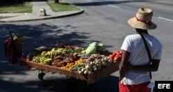El incipiente sector privado de Cuba mira con esperanza la apertura hacia EEUU.