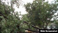 Severa tormenta local provoca daños de consideración en Jatibonico.
