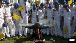 Niños de colegio toman parte de una campaña para erradicar el dengue y al mosquito chikungunya en Colombo, Sri Lanka.