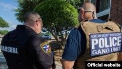 Detenidos varios pandilleros / ICE website