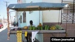 Los carretilleros, vendedores acosados en Cuba
