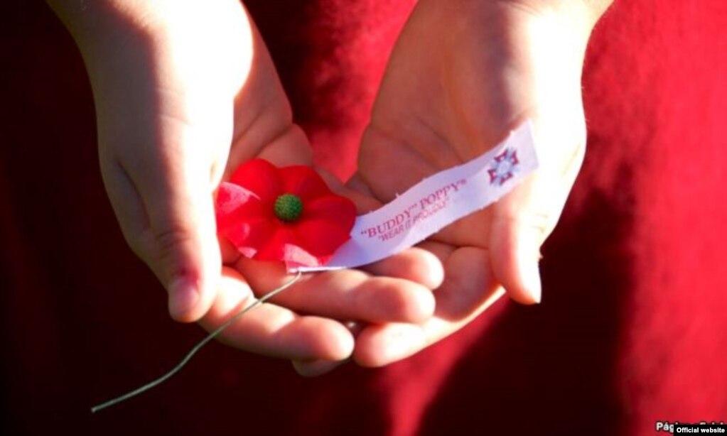 Campaña de Amapolas Rojas de los Veteranos estadounidenses de Guerras Extranjeras. Los fondos recaudados se donan a veteranos discapacitados.