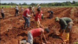 Cuba sigue en observación en la lista de tráfico humano