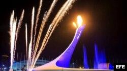 Sochi, Olimiadas de Invierno 2014.