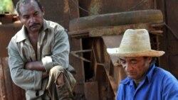 Nuevas leyes tributarias aumentan malestar en campesinos de Majibacoa